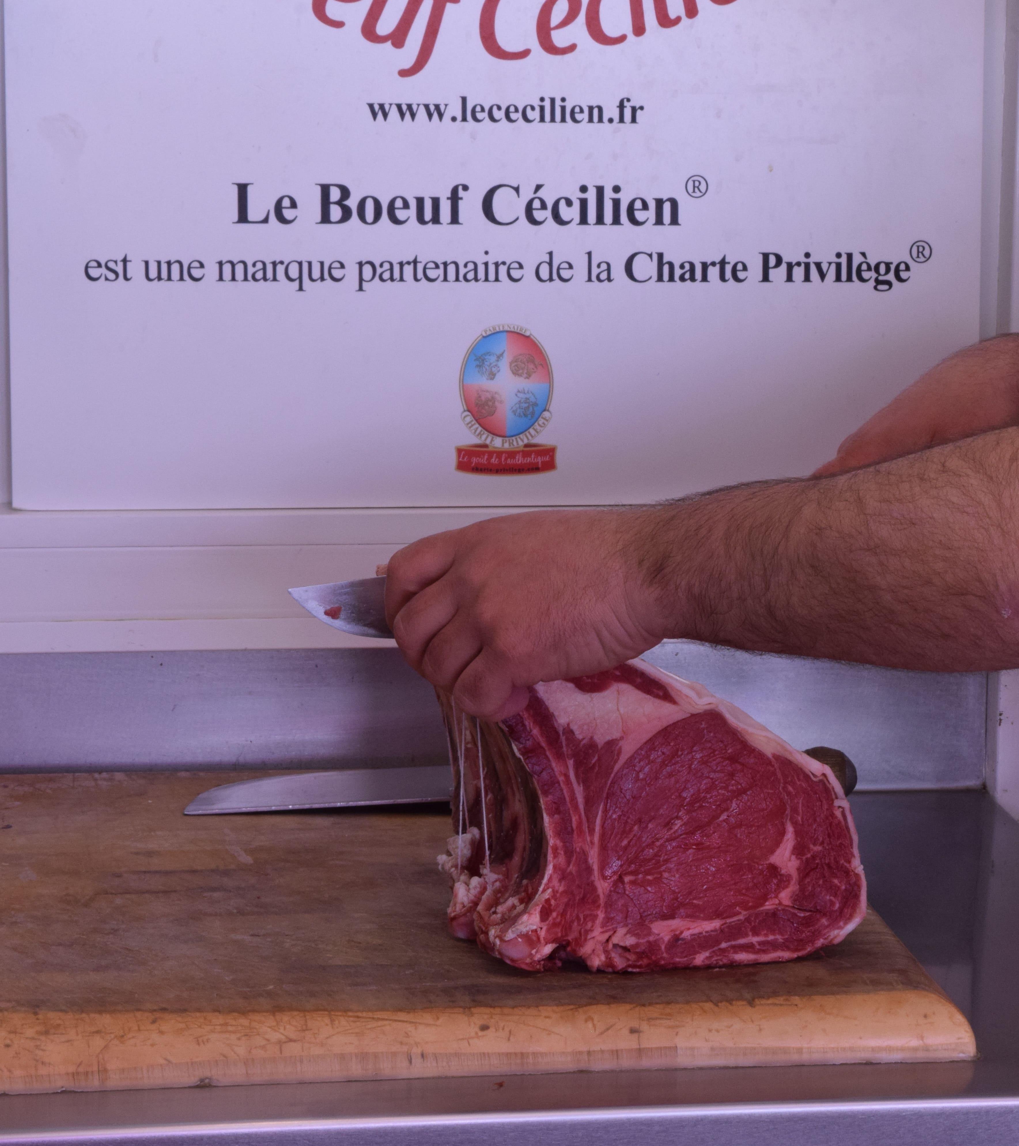 Artisan boucher découpe de la viande bovine, race Cécilienne